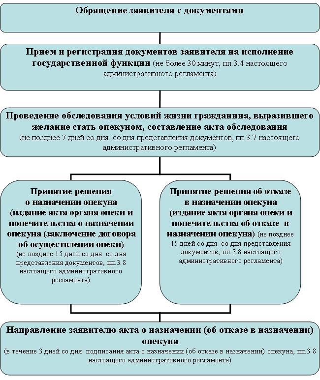 Автобиография Для Опекуна Образец